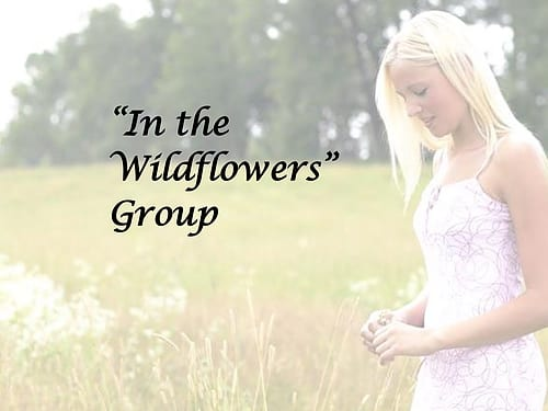 This image has an empty alt attribute; its file name is wildflowers2.jpg